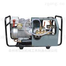 硫化机专用高压电动泵