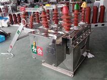 ZW8-12 12KV户外高压真空断路器质优价廉