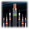 阻燃铠装屏蔽控制电缆型号ZR-KVVP22